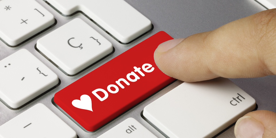<strong>Donate Now</strong>